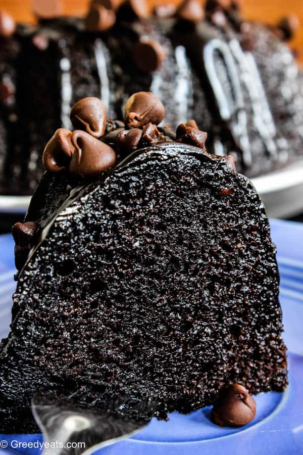 Moist chocolate bundt cake with chocolate chips