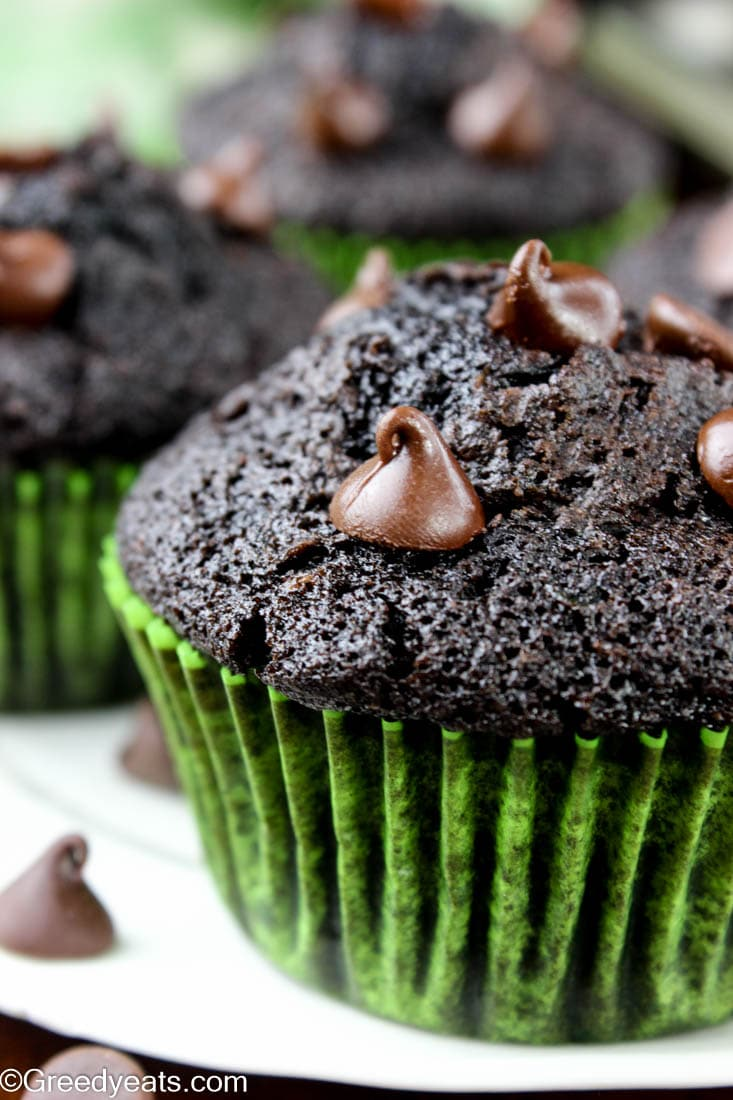 Well risen Zucchini Chocolate Muffins with melty chocolate chips on a white plate.