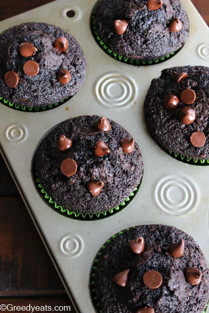 Baked Zucchini Muffins in baking tray with milk chocolate chips.