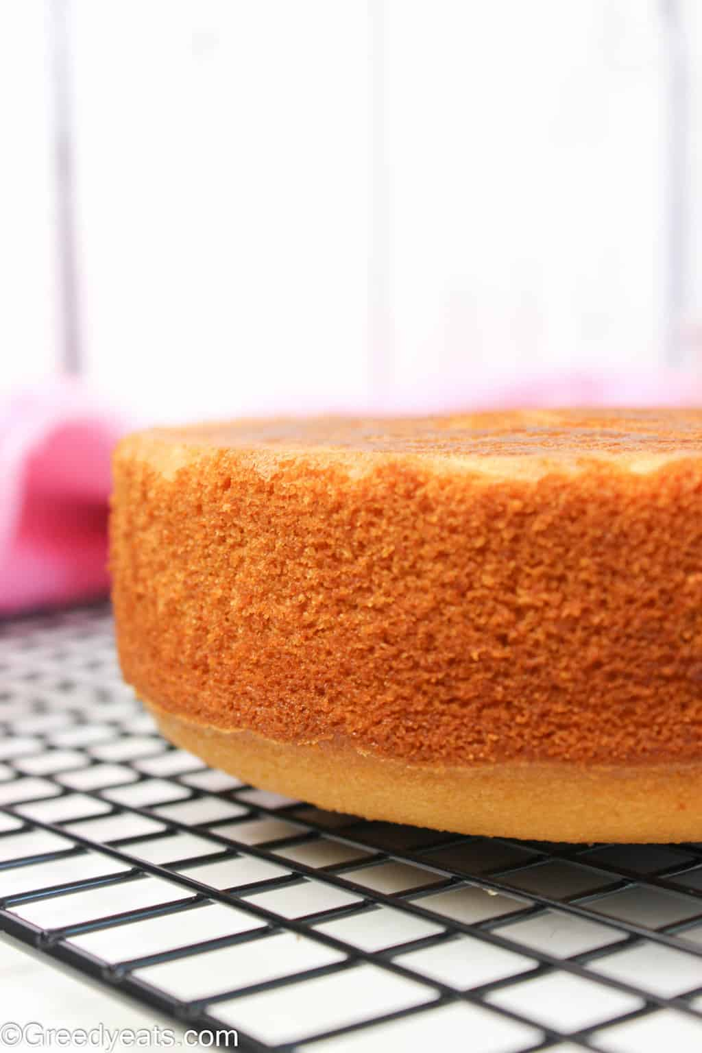Easy small batch vanilla cake recipe made in 6 inch round pan.